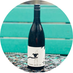 Shelter Winery Lovely Lily Pinot Noir | Germany 2018