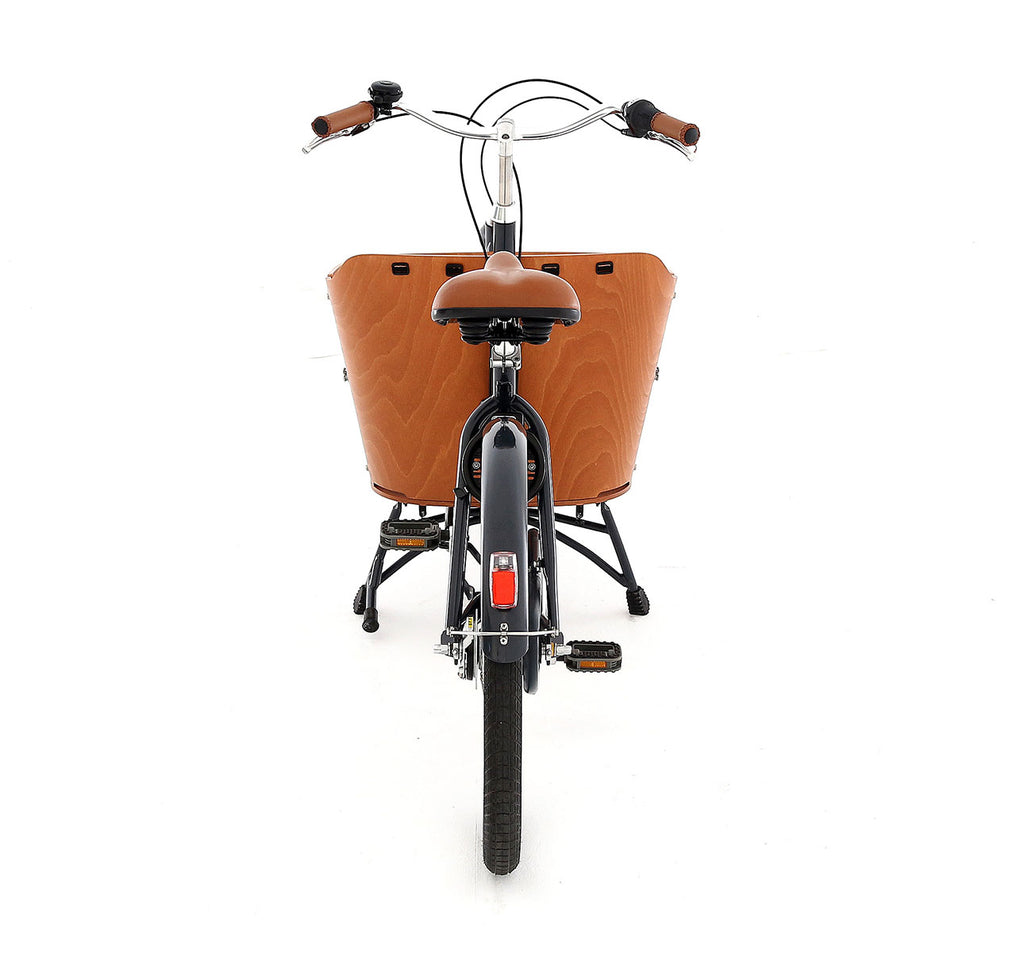Babboe Mini Cargo Bike Rear View - Two-Wheeled Dutch Cargo Bike