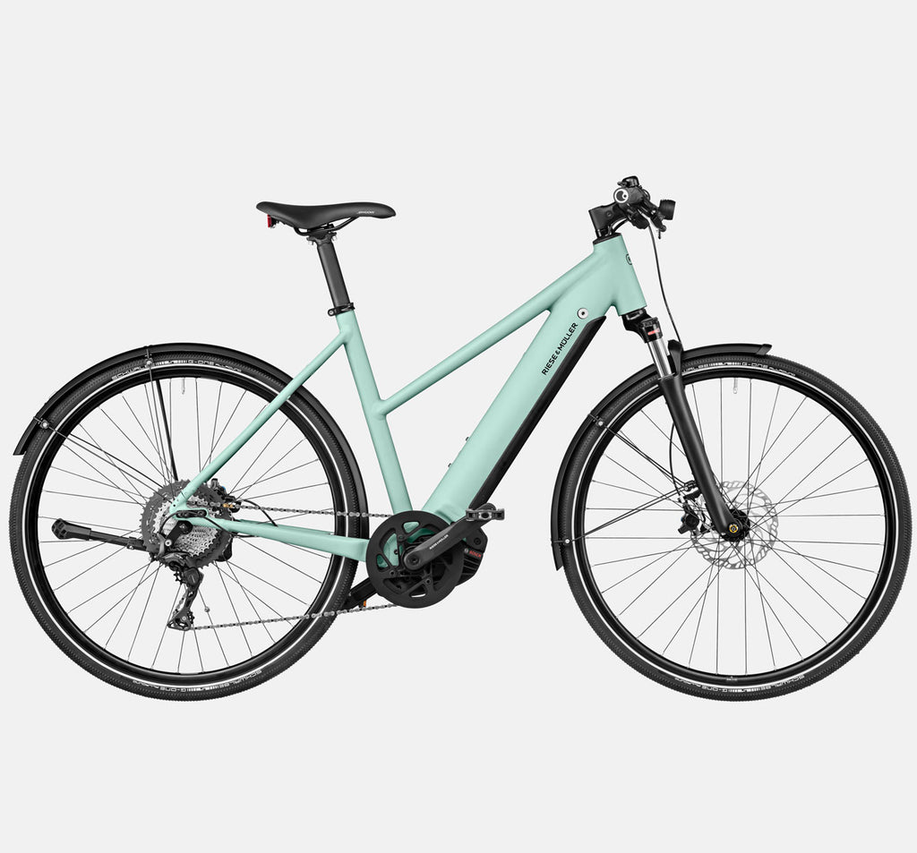 Riese & Muller Roadster Mixte Touring Suspension City E-Bike in Salvia Matte