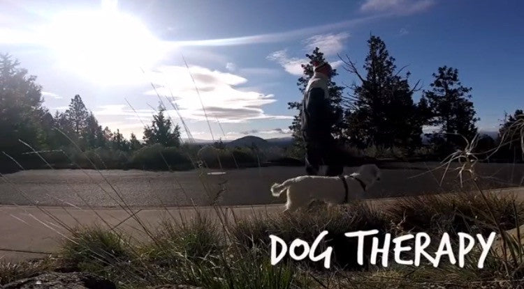 Dog Therapy with Jaymo, Ruby-Doo a Grill Mount and a GoPro