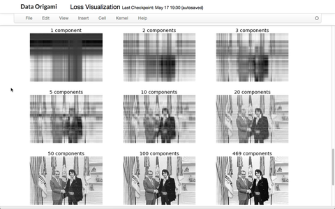Visualizing PCA's Information Loss