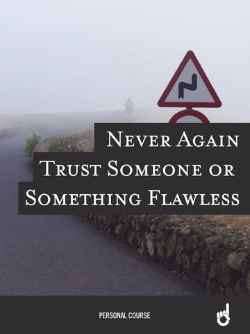 'Never Go Back' Workbook:  Never Again Trust Someone or Something Flawless