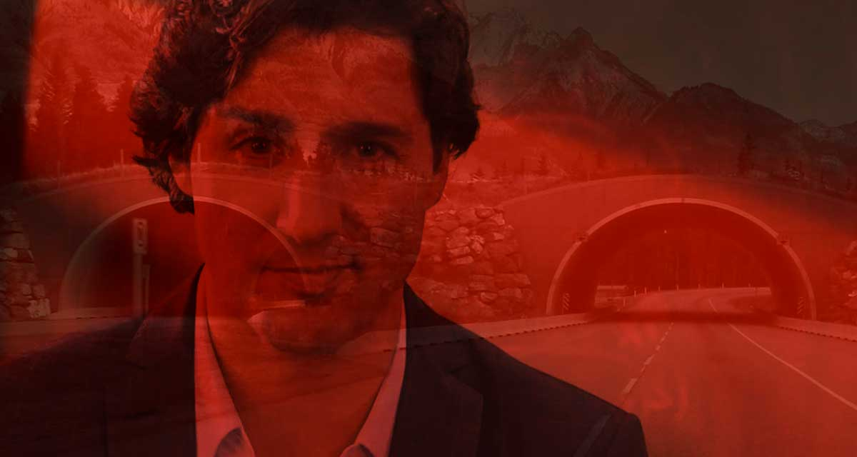 Trudeau Taxing Cannabis