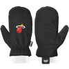 NBA Team Mitten - Miami Heat