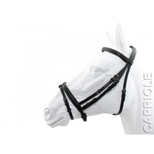 Capriole Backed Bridle