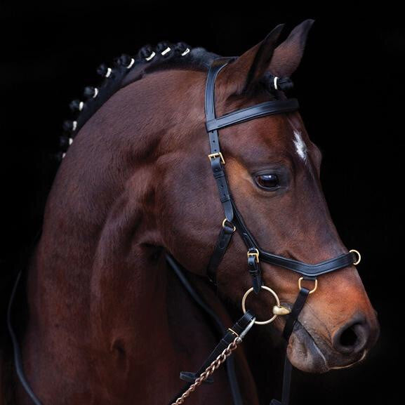 Rambo Micklem Multi-Bridle