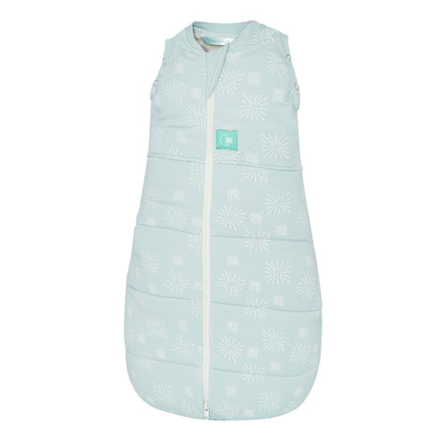 ergoPouch Winter Swaddle and Sleep Bag (2.5 tog) - Mint Star