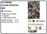 ALYSSUM CLEAR CRYSTAL MIX - 6 PACK