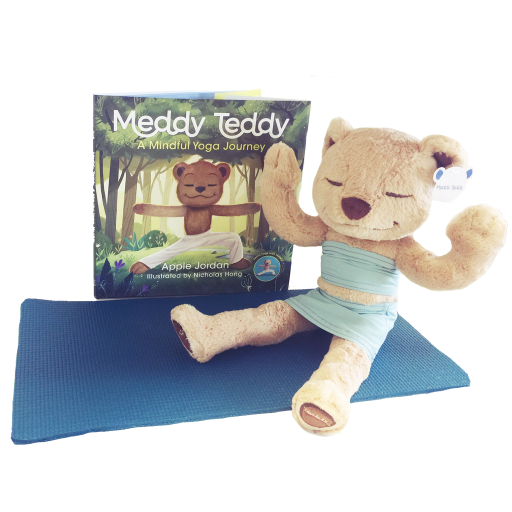 Meddy Teddy Set: Ice Blue Dress