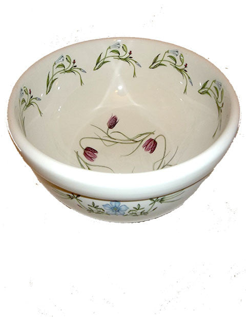"PORTMEIRION THE QUEEN'S HIDDEN GARDEN 9"" LARGE BOWL BY DAVID BELLAMY ENGLAND - The Other Alley"