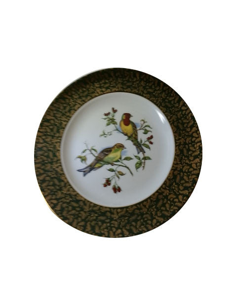 Yellow Bellied Bird Decorative Plate by Wood & Sons - The Other Alley