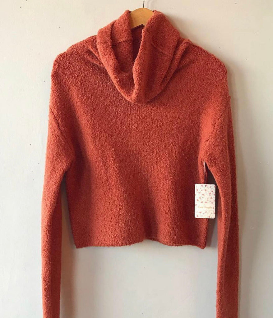 FREE PEOPLE Cowl Neck STORMY Plush Pullover
