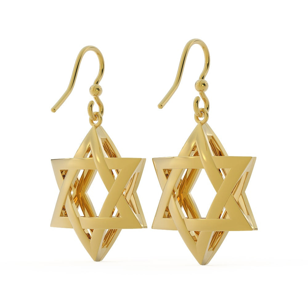 Exquisite 3D Star of David Earring