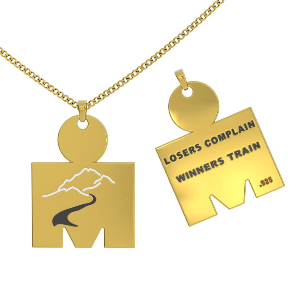 Iron Man Winners Train