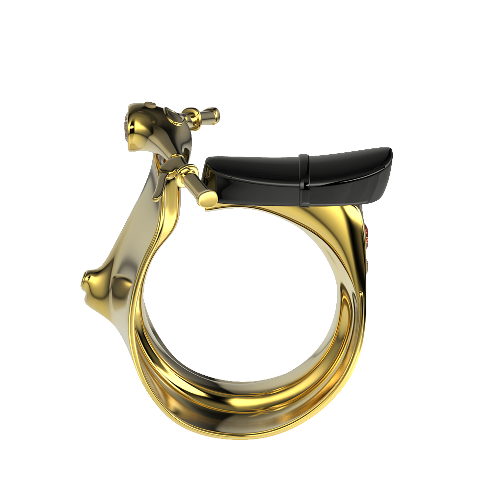 Private Scooter Ring