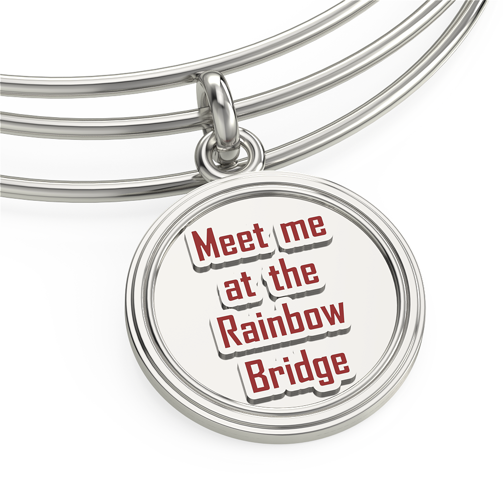 Rainbow Bridge Bangle and Charm
