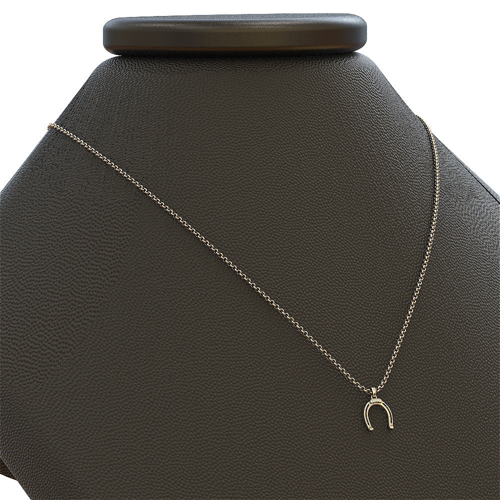 BEAUTIFUL HORSESHOE NECKLACE