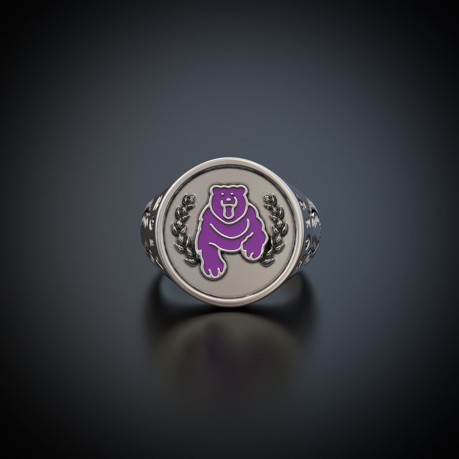 Class of '17 - Lake Braddock Secondary Ring