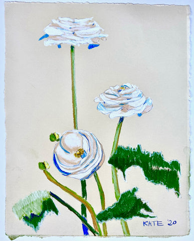 Ranunculus for Wynn 15x18