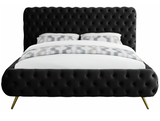 Exude Modern Bed Black