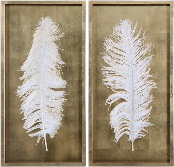 White feather in a gold leaf shadow box