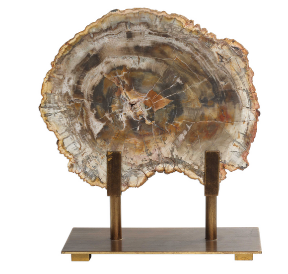 Polished Slice of Petrified Wood on antique bronze stand.