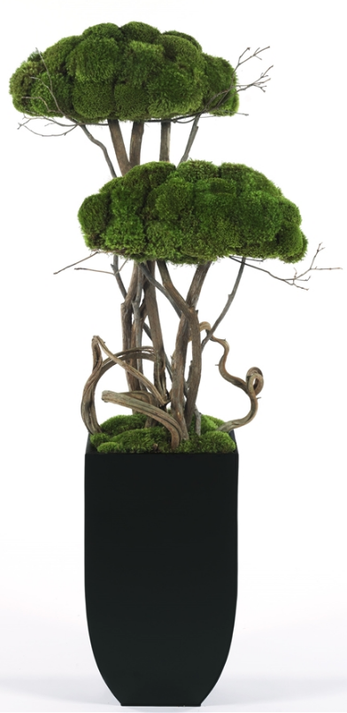 Modern Moss Two Tier Topiary