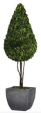 The Pendle Modern Preserved Topiary will add some flair to any room. Lush, thick boxwood preserved while freshly picked looks and feels like living boxwood. Single topiary is potted in a zinc finished terracotta planter.