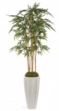 LeGrand Bamboo Tree