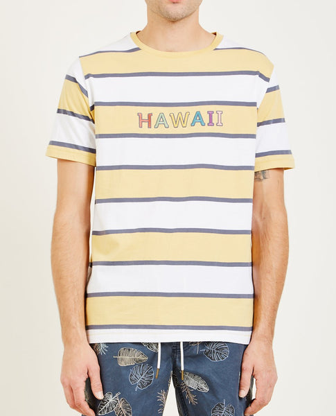 BARNEY COOLS HAWAII TEE
