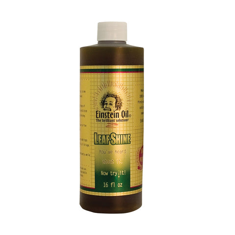 Einstein Oil, 16 Ounce