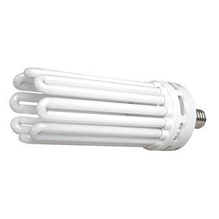 200 W Compact Fluorescent Bulb - Daylight