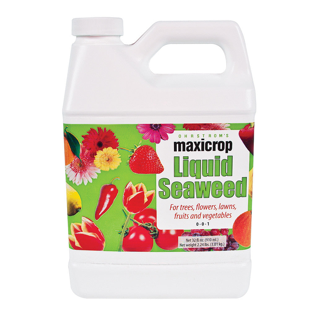 MaxiCrop Original Liquid Seaweed Quart Maxicrop - Pacific Coast Hydroponics Los Angeles