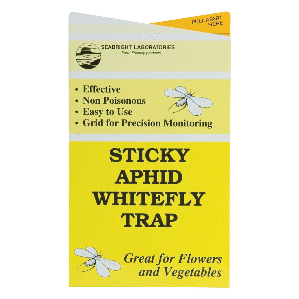 Whitefly Trap 5 Pack Seabright - Pacific Coast Hydroponics Los Angeles