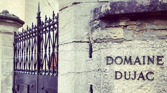 Go Big or Go Home: Back-Vintage Dujac Magnums