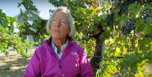 Rutherford Bench Whisperer: Cathy Corison's Napa Cabernet Sauvignons