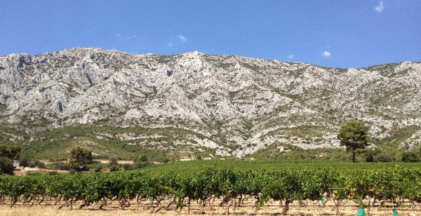 Provence Value Sweet Spot: Red, White, & Rosé of Triennes