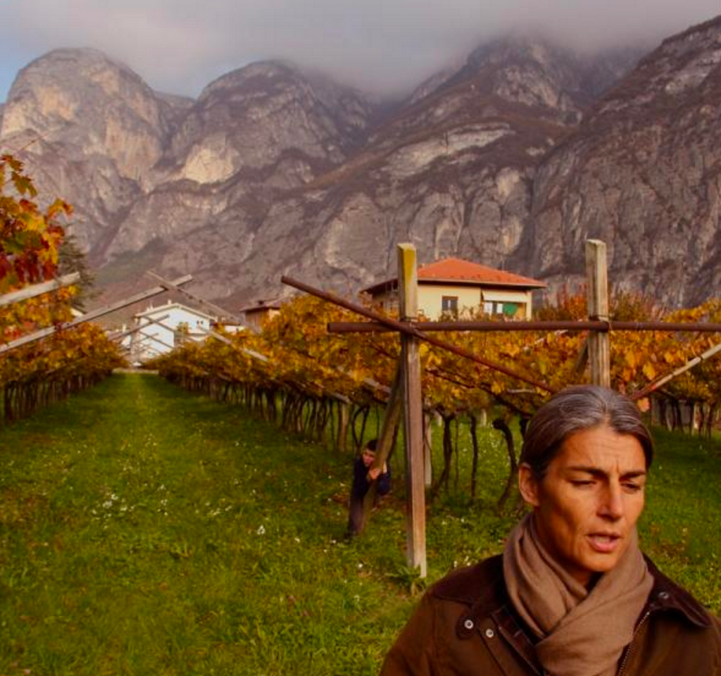 A Touch of Orange from Trentino: Foradori's Skin-Fermented White