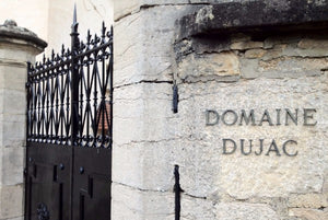 Singular Spice: The Wines of Domaine Dujac