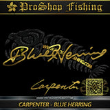 Carpenter Blue Hering