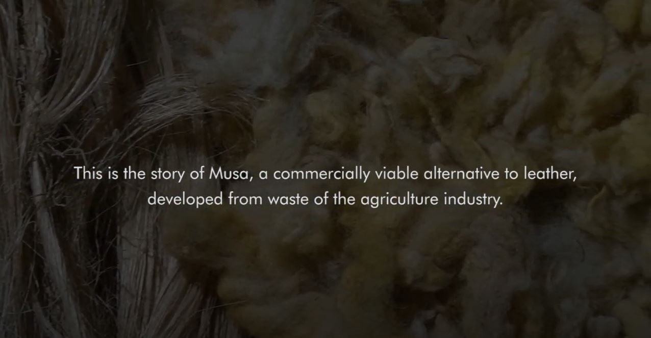 View the story behind Musa bio-leather