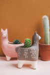 Matte Grey Llama Earthenware Pot