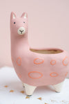 Dusty Rose Llama Earthenware Planter