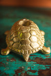 Gold Finish Tortoise Candle Holder