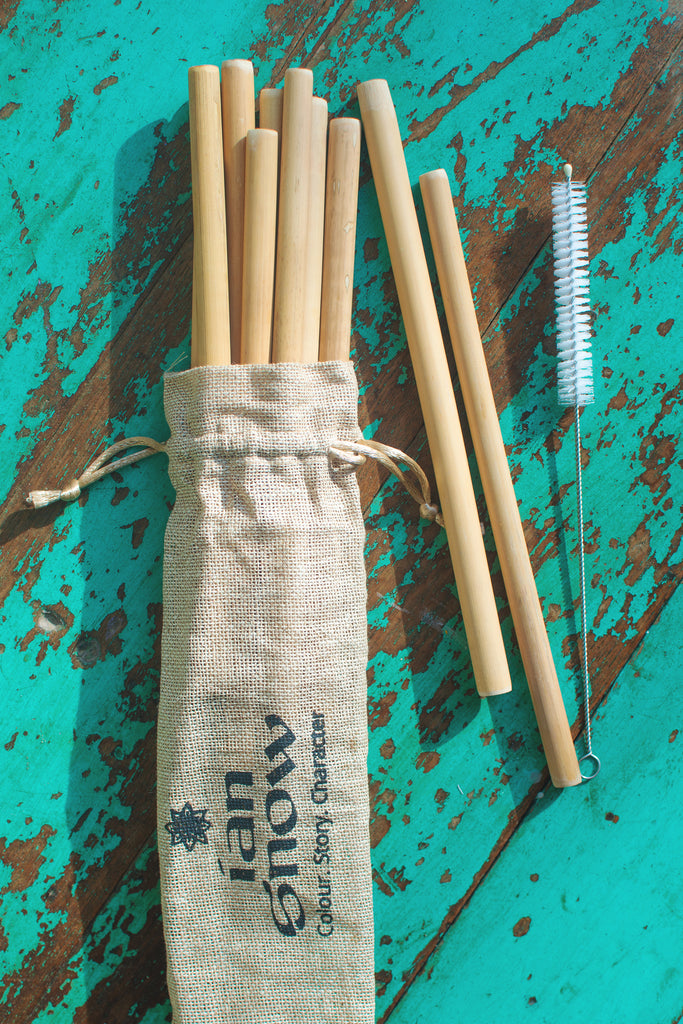 Set of 10 Bamboo Straws