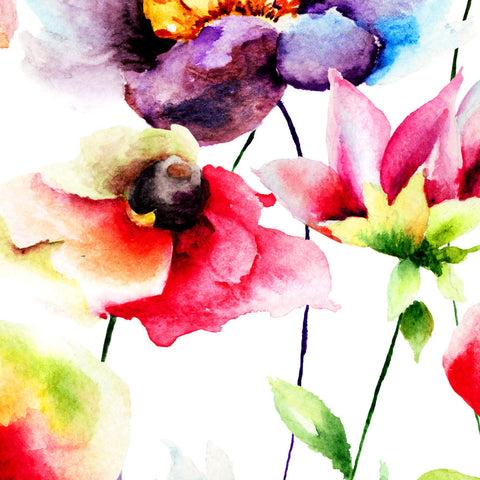ohpopsi Watercolour Flora 56x56cm Box Framed Canvas Wall Art