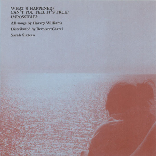 Another Sunny Day ‎– What's Happened?