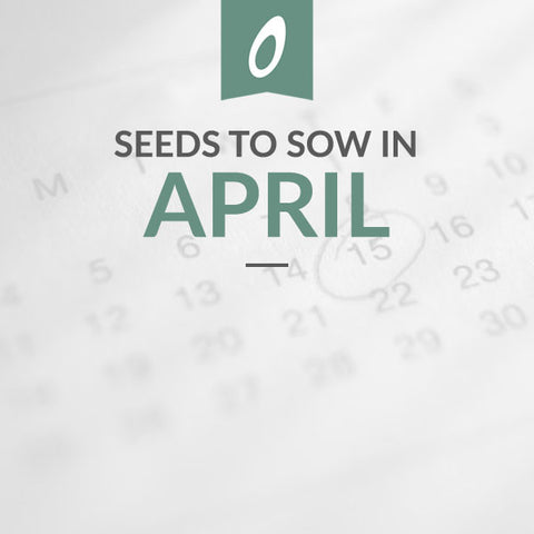 April Sowing
