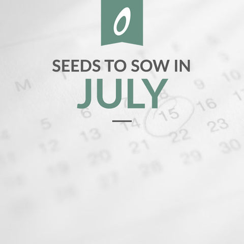 July Sowing