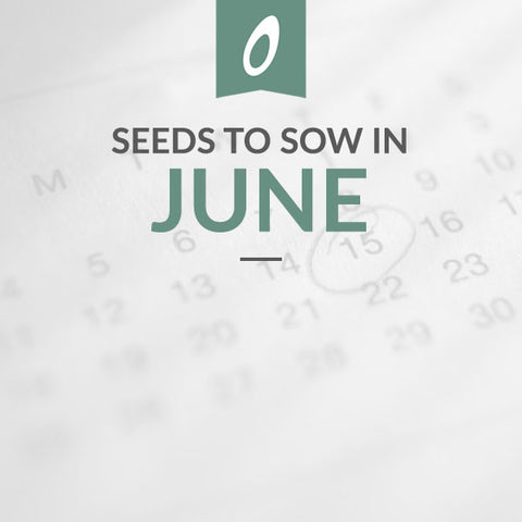 June Sowing